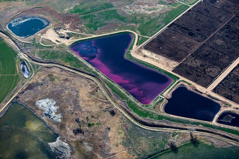"""""""Magenta Bloom"""" - Fort Morgan, Colorado - Evan Anderman"""