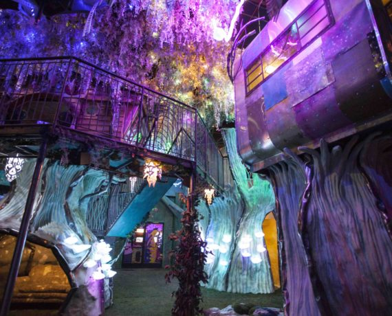 Documentary and New Locations for Meow Wolf